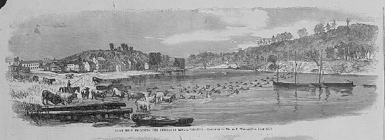 Army beef swimming the Occoquan River, Virginia / sketched by Mr. A.R. Waud. Library of Congress Online Catalog (634,618) Prints and Photographs Division (815,639)